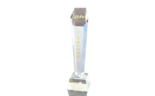 智富2011年度最佳合作伙伴